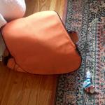 The Diaper Bag