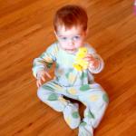 The Little Guy