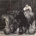 Circus Captives