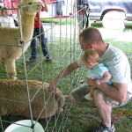 Unwanted Attention at a Petting Zoo