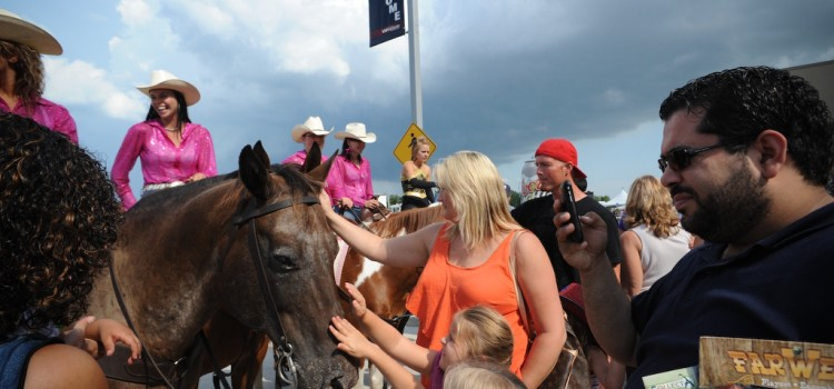 Kadatz Evasive in CBC Interview about 4 Horses Dead at The Calgary Stampede!
