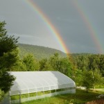 Rainbow Over the Greenhouse!