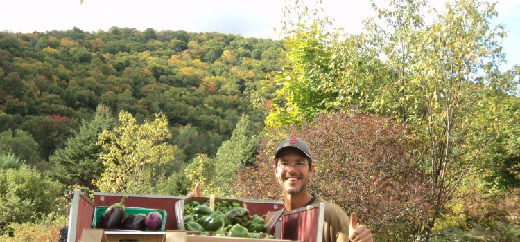 Why You Should Say No to GMO: A Vegan Farmer's Perspective