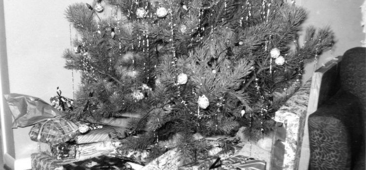 Christmas and Other Musings – a vegan perspective