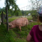 My Granddaughter and a Piggy!