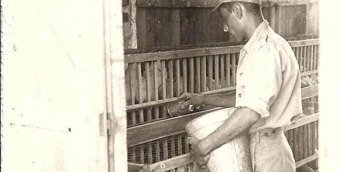 Is It Okay to Treat People to Nonhuman Animal  Based Food?