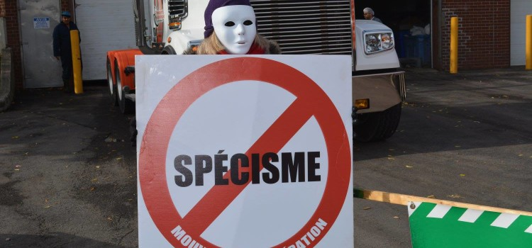 Vegans outside a slaughterhouse at an anti speciesism vigil