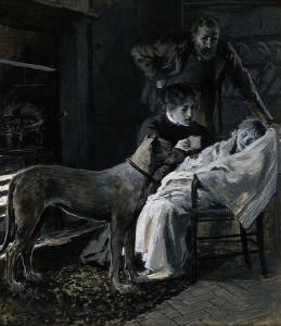 Canine and Human Empathy