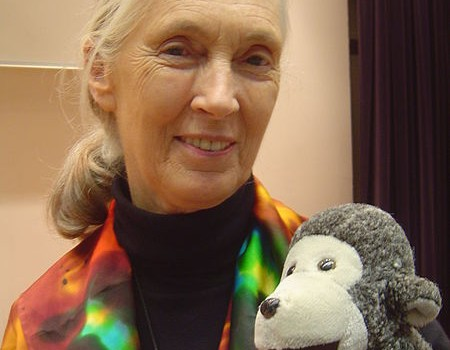 Jane Goodall: Pinup Girl for Vegetarianism and Sustainability