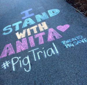 Anita Trial 7